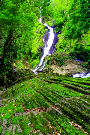 hidden waterfall in a dense rain forest, with mist being lit up by sunlight and mossy rocks in the foreground Stock Photo