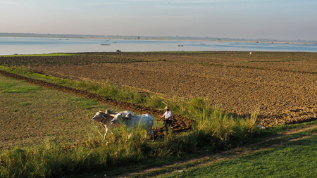 Life of fisherman and farmer at river side in Mandalay, Myanmar with wonderful sun light at morning Редакционное