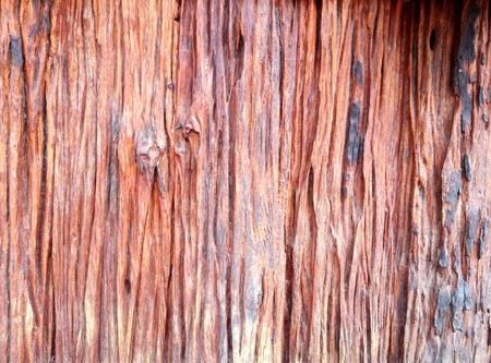 Old wood plank texture closeup background, Nature abstract texture backgrounds.
