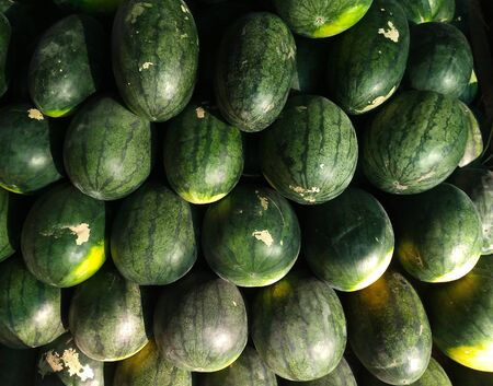 watermelons lies outdoors for future sale