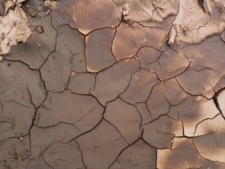 Drought in agriculture and grounds crack