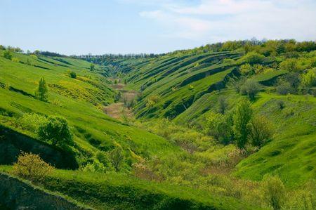 mountainside: vivid green valley