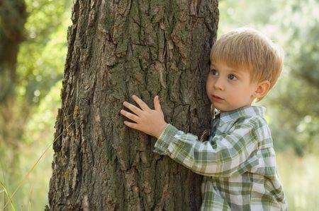 little boy embrace a tree photo