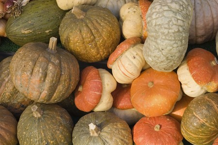 cymbling: large group of pumpkins in the market Stock Photo