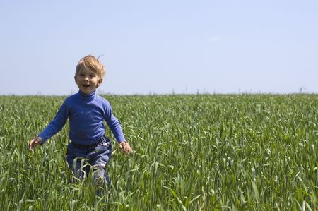 little boy is on the field of spring wheat photo