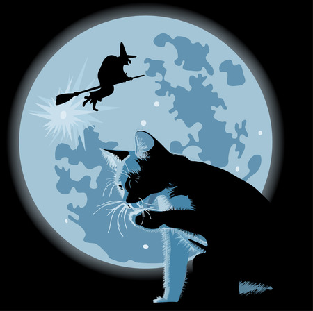 halloween theme with cat and witch against full moon Vector