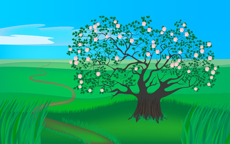 four seasons - spring apple tree Vector