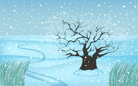 four seasons - winter apple tree Stock Vector - 6485953