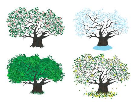 garden path: four seasons apple tree Illustration