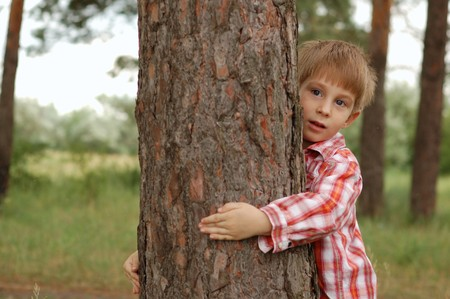 care for nature - little boy embrace a tree  photo