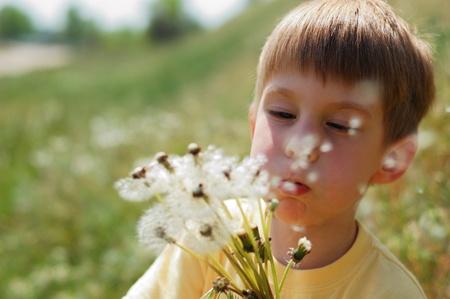 little boy blow dandelion on spring meadow photo