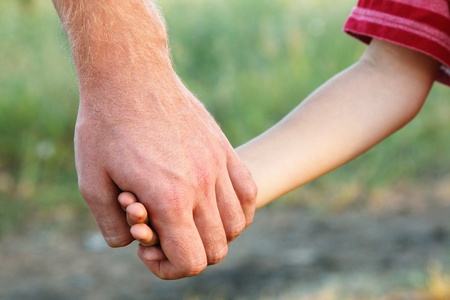 family father and child son hands nature outdoor  Stock Photo - 12106198