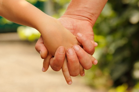 family father and child son hands nature outdoor  photo