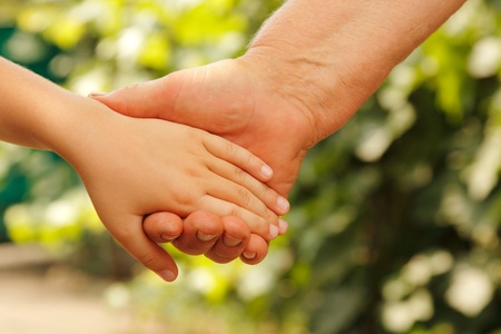children holding hands: hands family nature outdoor  Stock Photo