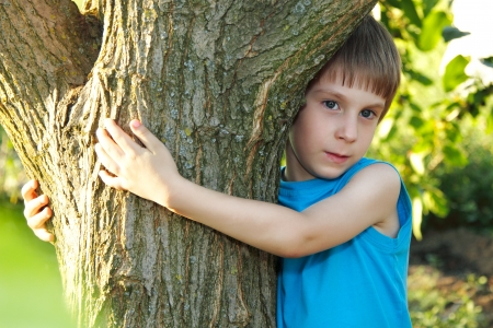 boy touch tree in forest - child care ecology environment nature  photo