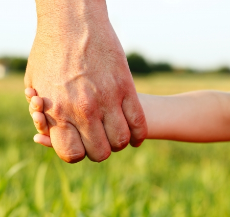 father and son holding hands: family father and child son hands nature outdoor