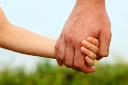 holding hand: fathers hand lead his child son in summer forest nature outdoor, trust family concept