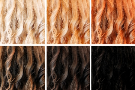 cabello casta�o claro: Conjunto de colores para el cabello, tintes diferentes