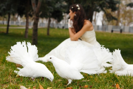 Young woman bride smiling with white pigeons over park autumn outdoor photo