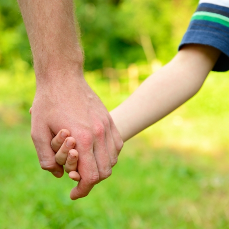 kids holding hands: hands, father lead his child in summer garden nature outdoor Stock Photo