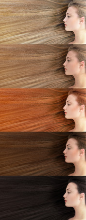 Set of different hair color. Beautiful young woman with  long healthy hair colored in blonde, fair, red, brown and black. Banque d'images
