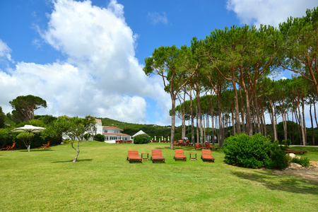 littoral: Holiday resort. Vivid summer landscape on the Mediterranean littoral.