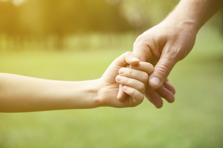 father and son holding hands: Family, father and child son hands over green summer nature outdoor. Trust and help concept. Toned. Stock Photo