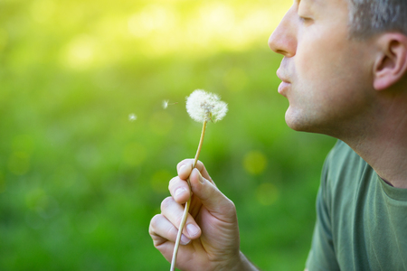 Man blowing dandelion over blured green grass, summer nature outdoor Stock Photo