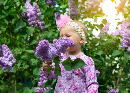 sanguine: Beautiful little girl smells lilac flowers in spring park. Childhood. Cute kids face over nature background. Cheerful childs portrait, soft focus.