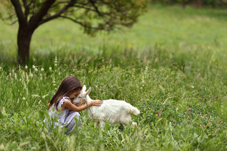 Little girl plays and huhs goatling in country, spring or summer nature outdoor. Cute kid with baby animal, forest, trod, glade background. Friendship of child and yeanling, image toned.
