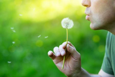 Blured 緑色草、夏の自然の屋外、詳細にタンポポを吹く男 写真素材