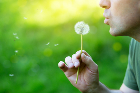 Man blowing dandelion over blured green grass, summer nature outdoor, detail