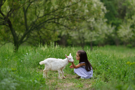 Little girl plays and huhs goatling in country, spring or summer nature outdoor. Cute kid with baby animal, countryside outdoor portrait, forest, trod, glade background. Friendship of child and yeanling