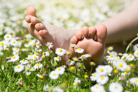 Child's feet in daisy closeup view. Shoeless boy. Little boy lying on summer meadow green grass with daisy. Фото со стока