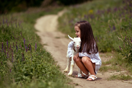 baby goat: Little girl plays and huhs goatling in country, spring or summer nature outdoor.