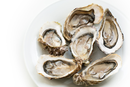 Oysters. Raw fresh oysters are on white round plate, image isolated, with soft focus. Restaurant delicacy. Stock Photo