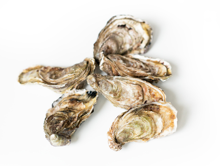 Oysters. Raw fresh oysters, image isolated, with soft focus. Restaurant delicacy.
