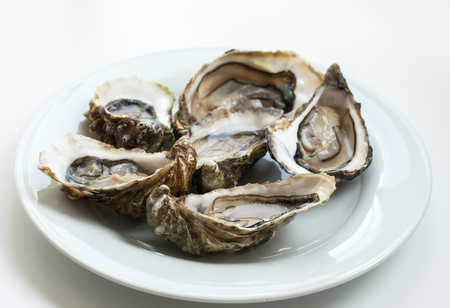 Oysters. Raw fresh oysters are on white round plate, image isolated, with soft focus. Restaurant delicacy. Banco de Imagens