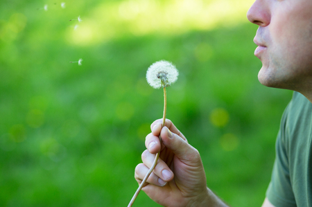 Man blowing dandelion over blured green grass, summer nature outdoor Imagens