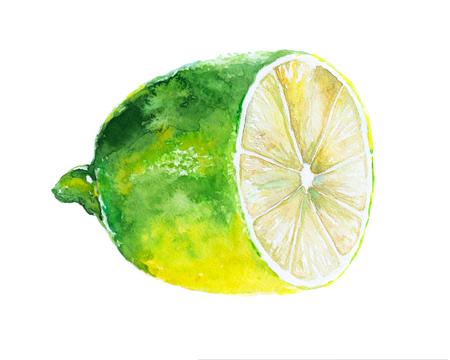Yellow lemon with leaves. Fruit illustration. Bright print for fabric or wallpaper. Vibrant juicy ripe citrus fruit Stock Illustration - 122781841