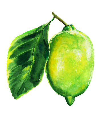 Yellow lemon with leaves. Fruit illustration. Bright print for fabric or wallpaper. Vibrant juicy ripe citrus fruit Stock Photo