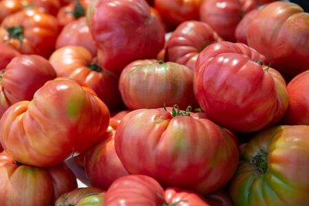 Fresh raw ripe pink tomatoes sold on outdoor market. Farm seasonal spanish fruits and vegetables