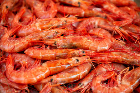 large boiled red prawns sold on outdoor italian market in Sicily