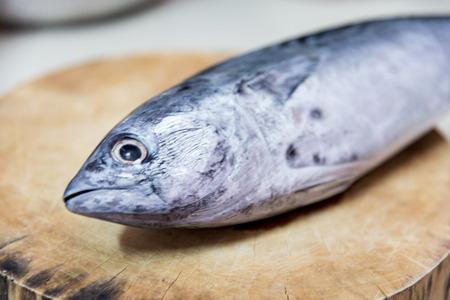dismantle: Dismantle of a tuna fish