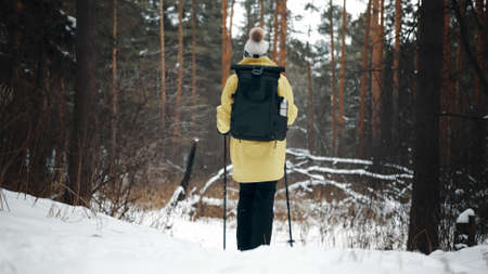 Girl with a white hat in the forest with a backpack and hiking sticks in winter. Back view Banco de Imagens