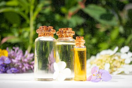 Natural cosmetic essential oils in glass small jars on background of greenery and flowers. Spectacular splashes of water in air. Concept of freshness, beauty, organic cosmetics, aromatherapy.