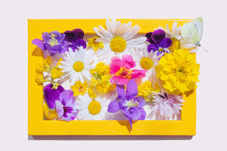 Homemade yellow photo frame with various yellow, purple and pink flowers inside. On the frame sit a light butterfly. Cute summer concept. Image for holiday cards, greetings. Isolated, light background