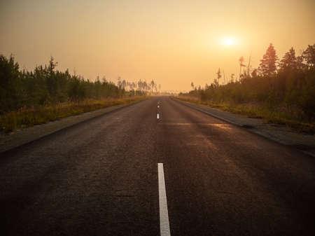 Empty asphalt road, track in the forest at dawn. Summer landscape. Reklamní fotografie