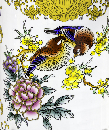 insectivorous: Bird paintings Stock Photo