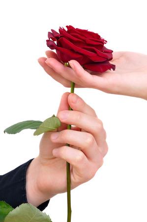 Resultado de imagen de imagenes de una mujer con una rosa en la mano